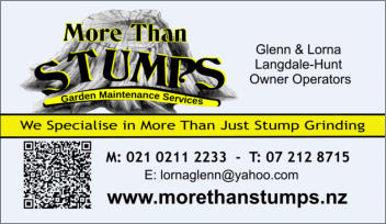 More Than Stumps Business Card